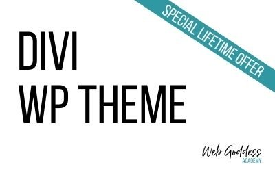Divi WP Theme